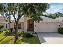 View 11330 Cypress Reserve Dr Tampa FL