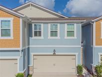 View 17806 Althea Blue Pl Lutz FL