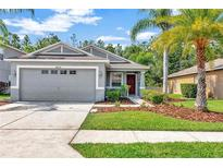 View 30634 White Bird Ave Wesley Chapel FL