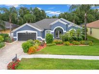 View 8845 Wavyedge Ct Trinity FL