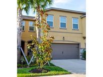View 5639 Grand Sonata Ave Lutz FL