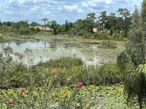 View 21133 Los Cabos Ct Land O Lakes FL