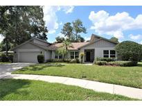View 3203 Heatherbrook Way Tampa FL