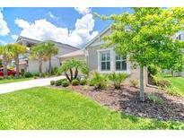 View 8035 Clementine Ln Tampa FL