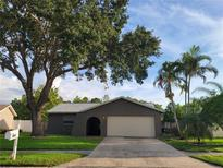 View 7460 118Th Ter Largo FL