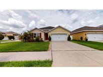 View 10671 Park Meadowbrooke Dr Riverview FL