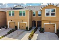 View 14259 Damselfly Dr Tampa FL