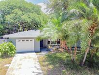 View 1553 S Evergreen Ave Clearwater FL