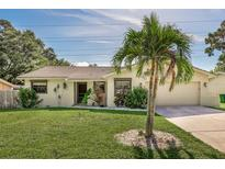 View 86 Talley Dr Palm Harbor FL