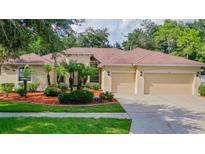 View 15512 Carrillon Estates Blvd Tampa FL