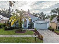 View 18009 Palm Breeze Dr Tampa FL