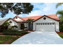 View 14104 Stonebrook Ct Tampa FL