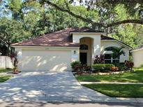 View 10440 Springrose Dr Tampa FL