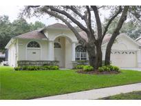 View 5606 Macallan Dr Tampa FL