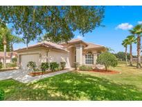 View 1285 Lindenwood Dr Tarpon Springs FL
