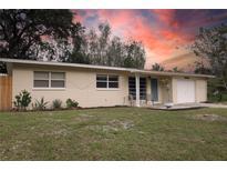 View 10601 N 19Th St Tampa FL