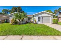 View 2059 Eagle Run Ct Clearwater FL