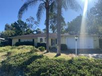 View 3432 Montano Ave Spring Hill FL