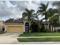 View 4524 Anaconda Dr New Port Richey FL