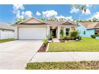 View 11111 Shadybrook Dr Tampa FL