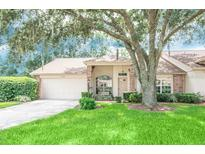 View 9804 Brookdale Dr New Port Richey FL