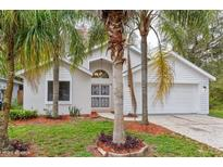View 11000 Bentwood Ct New Port Richey FL