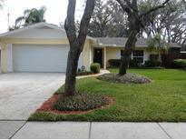 View 411 N Florida Ave Tarpon Springs FL