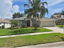 View 382 Gray Oak Dr Tarpon Springs FL