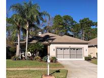 View 11451 Bloomington Ct New Port Richey FL