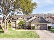View 5352 Casa Nueva Dr New Port Richey FL