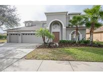 View 3152 Marble Crest Dr Land O Lakes FL