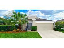 View 30418 Arrochar St Wesley Chapel FL
