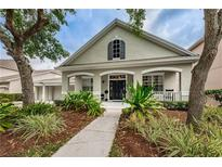 View 14679 Canopy Dr Tampa FL