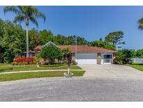 View 1153 Farmingdale Ln New Port Richey FL
