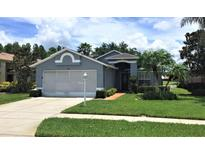 View 1146 Winding Willow Dr Trinity FL