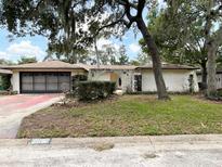 View 8651 Elm Leaf Ct Port Richey FL