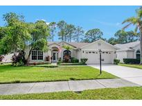 View 9422 Conservation Dr New Port Richey FL