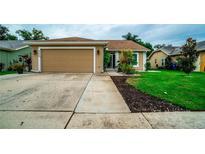 View 4224 Foxboro Dr New Port Richey FL