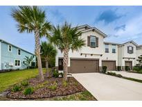 View 17826 Althea Blue Pl Lutz FL