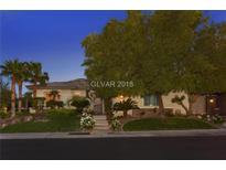 View 10859 Eden Ridge Ave Las Vegas NV