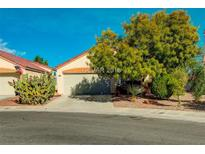 View 7932 Nesting Pine Pl Las Vegas NV