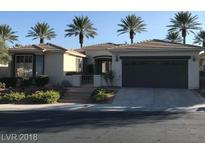 View 10647 Riva De Fiore Ave Las Vegas NV
