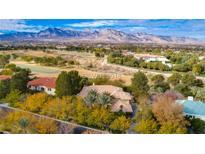View 1417 Iron Hills Ln Las Vegas NV