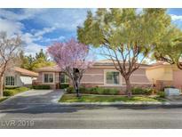 View 11137 Golden Aster Ave Las Vegas NV