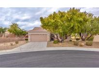 View 2111 Mount Sunflower Ct Henderson NV