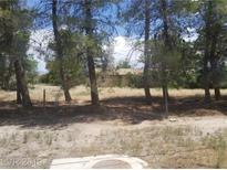 View 6361 S Homestead Pahrump NV