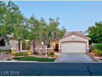 View 9821 Cantebury Rose Ln Las Vegas NV