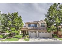 View 11101 Arbor Pine Ave Las Vegas NV