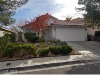 View 9881 Pioneer Ave Las Vegas NV