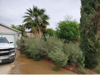 View 6031 Sun Tree Cir Las Vegas NV